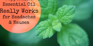 peppermint essential oil headaches nausea